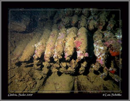 Umbria - Wingate Reef,Sudan