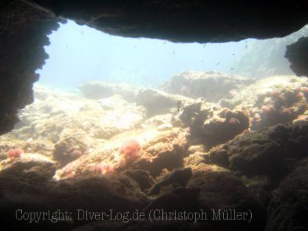 Diving Centers Werner Lau - Aldiana,Larnaca,Zypern