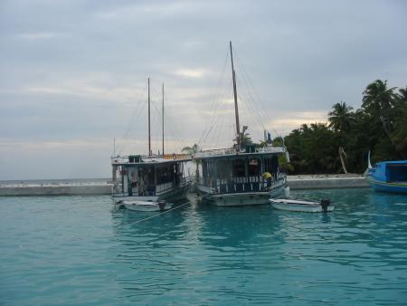Hammerhead 2,Malediven