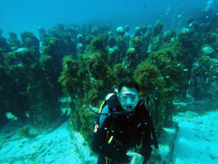 Coconut Divers,Cancun,Mexiko