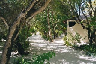 Summer-Island,Diverland,Malediven