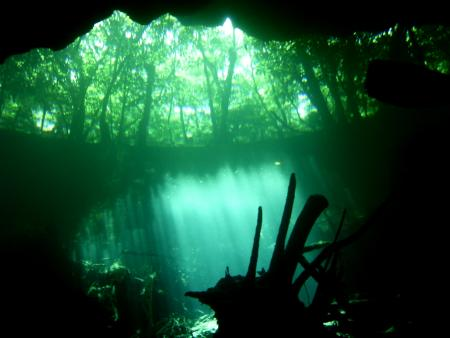 Cenote Adventures,Playa del Carmen,Mexiko