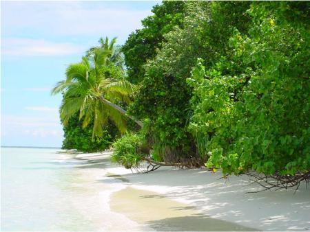 Vilamendhoo,Malediven