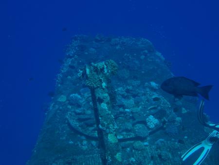 Orca Dive Club,Mövenpick Hotel,Abu Soma,Safaga,Ägypten