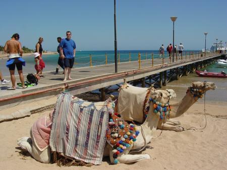 Le Meridien,Makadi Bay,Ägypten