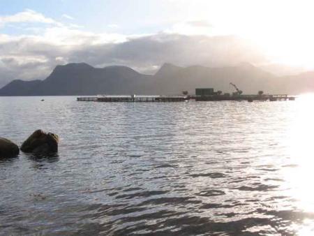Tauchen in Mittelnorwegen,Norwegen
