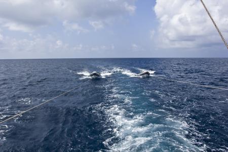 S/Y Maldives Siren,Malediven