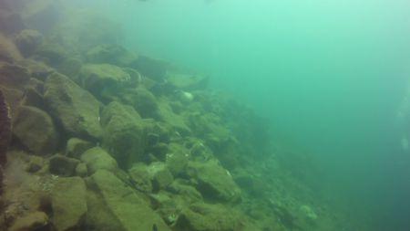 El Salvador Divers,El Salvador