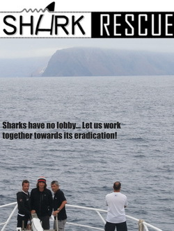 Shark Rescue - Christian Redl, Wolfgang Frühwirth