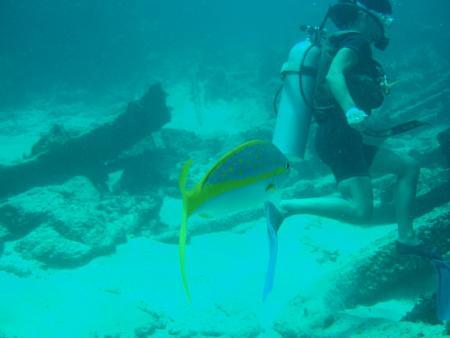 Pelicano Sport,Bavaro - Punta Cana,Dominikanische Republik