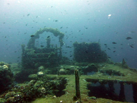 Fran`s Reef Adriatic Diving & Sailing,Auto Kamp ORSERA,Vrsar,Kroatien