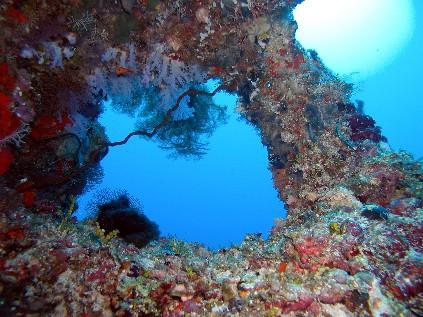 Embudu / Süd Male Atoll, Embudu,Malediven