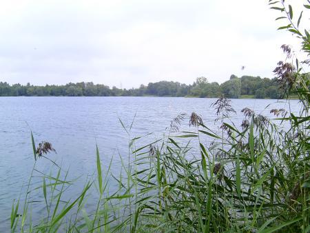 SeeDiver Tauchsport  CLUB,Berg. Gladbach und Köln,Nordrhein-Westfalen,Deutschland
