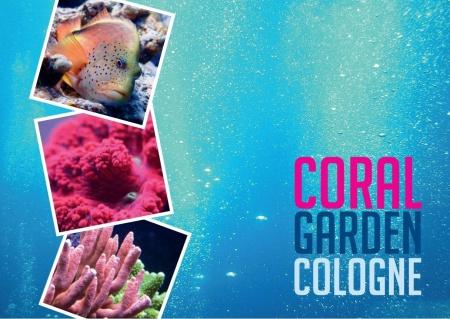 Coralgarden Cologne,Nordrhein-Westfalen,Deutschland