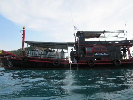 Rainbow Fish Divers,Koh Tao,Golf von Thailand,Thailand