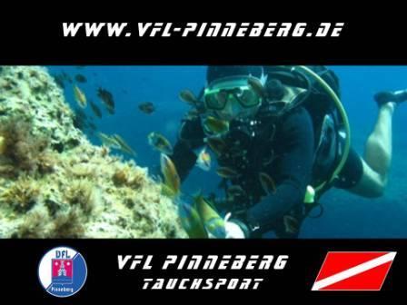 VfL Pinneberg,Schleswig-Holstein,Deutschland,Schleswig Holstein