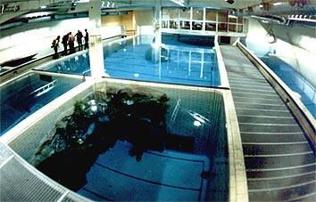 U-49 Indoor Diving, Aufkirchen, Deutschland, Bayern