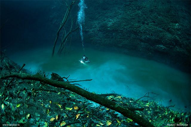 Angelita Cenote, Planet Scuba Mexico Höhlentauchen Cenoten, Angelita Cenote, Mexiko