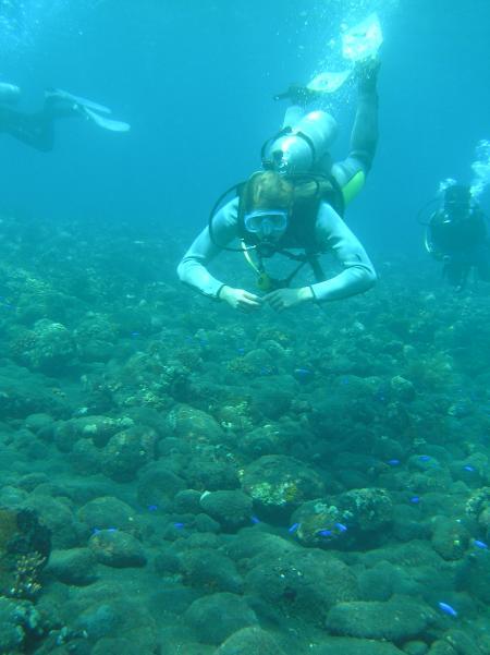 Gani-Bali-Dive,Joes Diving Bali - Die Tauchburg,Bali,Indonesien