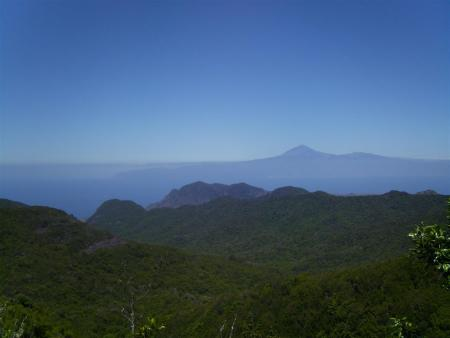 Dive Art,San Sebastian,Gomera,Kanarische Inseln,Spanien
