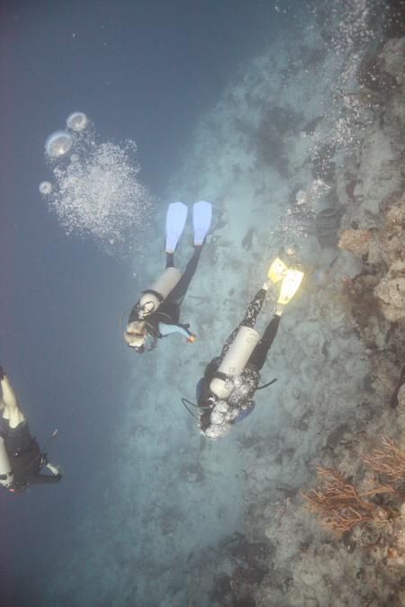 Caicos Adventures,Turks- und Caicosinseln