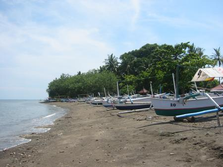 Reef Seen Aquatics,Pemuteran,Bali,Indonesien