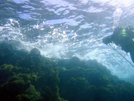 Northdiving Lanzarote,Arrieta,Lanzarote,Kanarische Inseln,Spanien