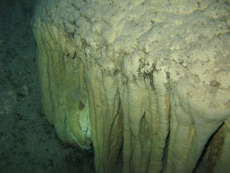 Cenote Dos Ojos (Bat-Cave),Mexiko