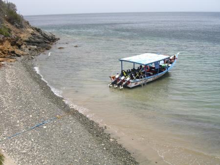 Scubadiving Margarita,Dive Inn Oasis,Isla de Margarita,Playa el Agua,Venezuela