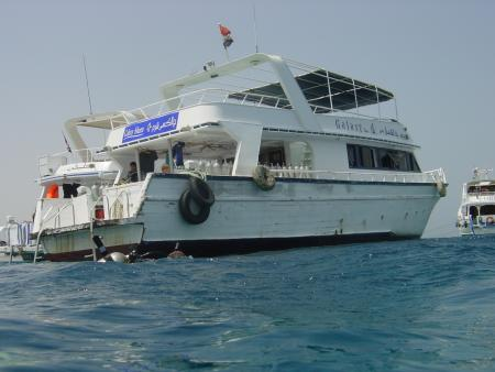 Aquarius Diving Club,Sharm el Sheikh,Sinai-Süd bis Nabq,Ägypten