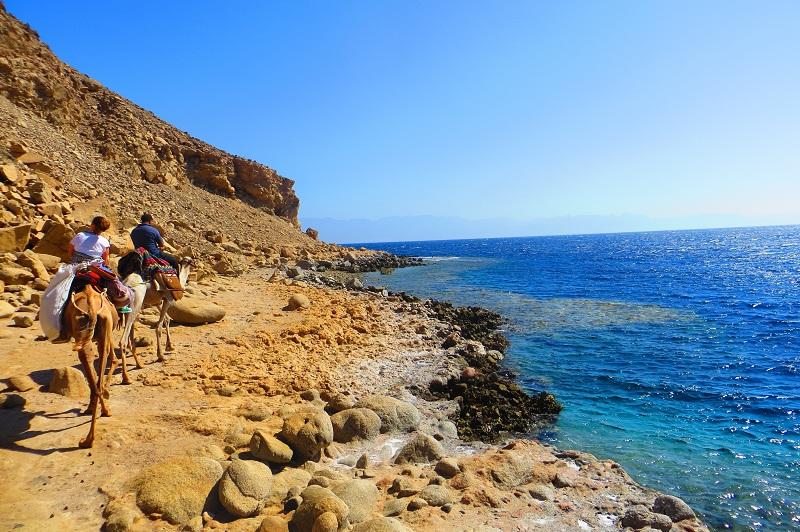Kamelsafari abu galum zu ras. Camel safari to Ras abu Galum, Dive Urge Dive Resort, Dahab, Ägypten, Sinai-Nord ab Dahab
