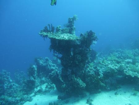 Scuba Divers Red Sea,Sharm el Sheikh,Sinai-Süd bis Nabq,Ägypten