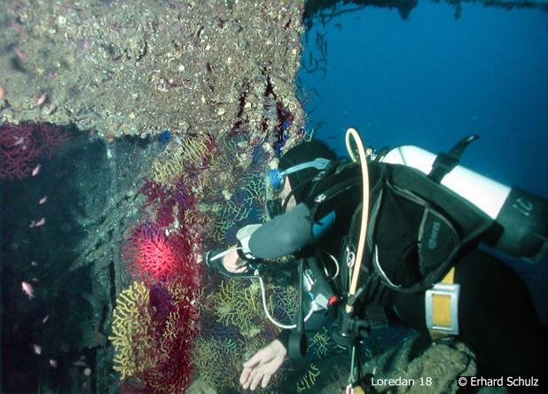 Scuola Sub Diving Center, Torre delle Stelle (Sardinien), Italien, Sardinien