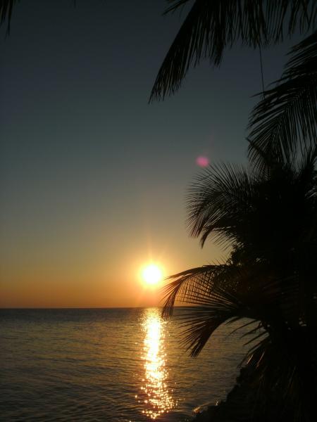 ReefCI,Belize