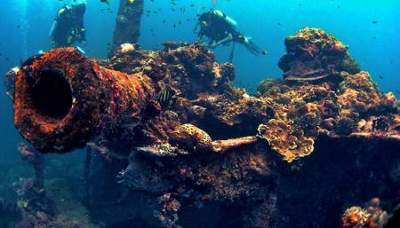 Helmet Wreck,Palau