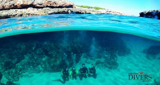 tauchen auf Mallorca; Diving Mallorca, East Coast Divers, Porto Colom, Mallorca, Spanien, Balearen