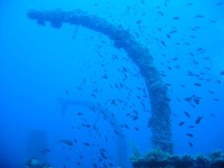Orosei Diving Center  (Sardinien),Sardinien,Italien