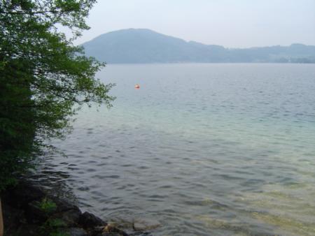 Attersee Unterwasserwald,Österreich