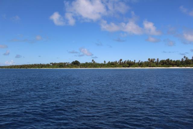 Fahrt zum Tauchplatz, Carpe Novo Explorer, Malediven