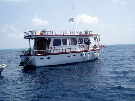 Dorado,Malediven