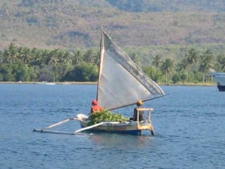 Ari Jaya / Komodo,Sulawesi Liveaboard,Indonesien