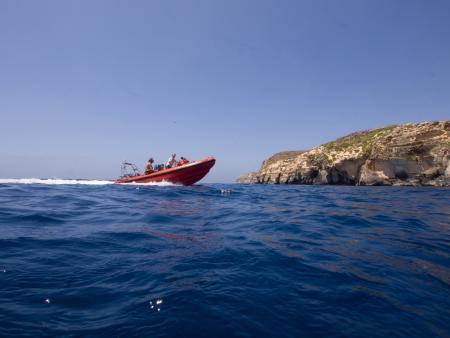 Ocean Dreams,Malta