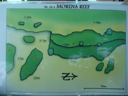 Morena Reef,North Male Atoll,Malediven