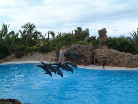 Guidos-Bubble Club,Teneriffa,Kanarische Inseln,Spanien