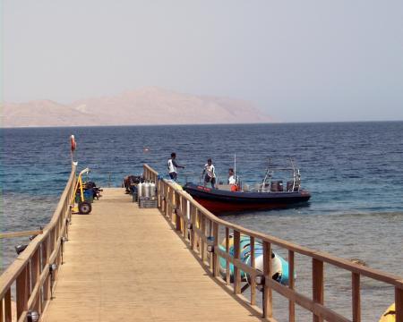 Sinai Blues,Sharm el Sheik,Sinai-Süd bis Nabq,Ägypten