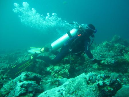 South - Sulawesi - Diver (Bira),Sulawesi,Indonesien