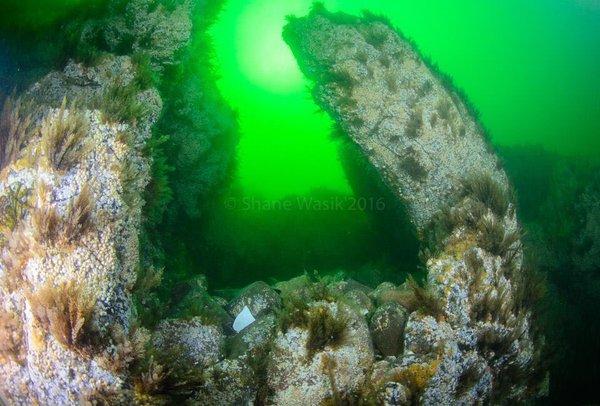Falls of Laura - Unterwasserlandschaft, Falls of Lora , Großbritannien, Schottland