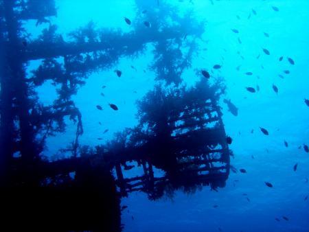 Yazan Alsaed´sYasmena Diving and Snorkeling Boat,Aqaba,Jordanien