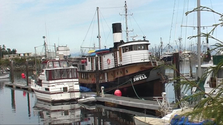 M.V. Nautilus Swell,Kanada