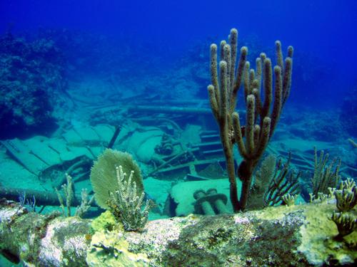 Cienfuegos - Süd Küste, Cienfuegos - Süd Küste,Kuba